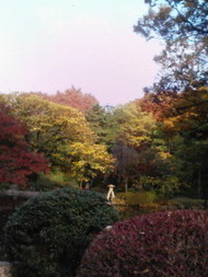 Arisugawapark_2