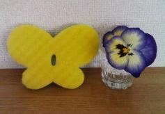 Sponge_2
