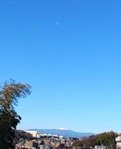 Fujimoon1314