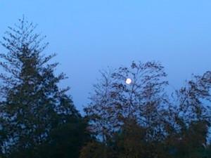 Moon13427_2