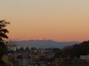 Pinkfuji1312_2
