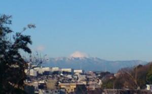 Fuji1416