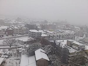 Snow1428