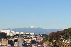 Fuji141114