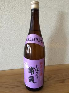 Urakasumi