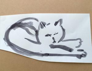 Cat16222