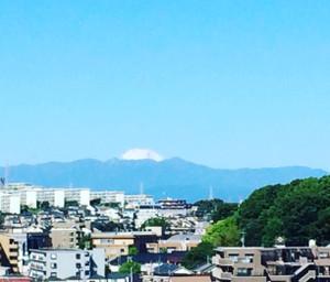 Fuji16513