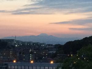 Fuji16521