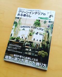 Greeninteria1