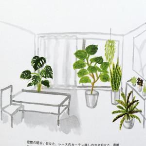 Greeninteria2