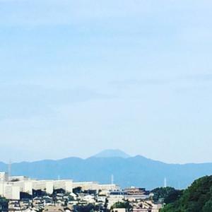 Fuji16104