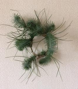 Pinewreath